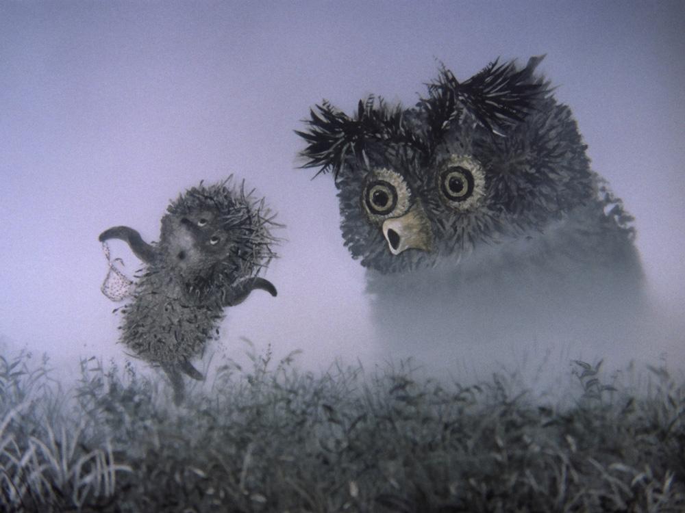 Картинки с ежами прикольные в тумане